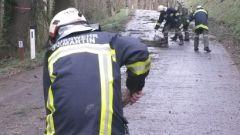 sturmschaden_gemeindegebiet005